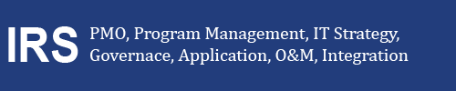 PMO, Program Management, IT Strategy, Governance, Applications, O&M, Integration