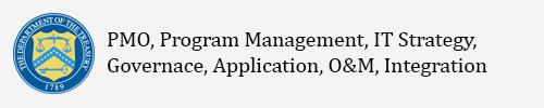 PMO, Program Management, IT Strategy, Governance, Applications, O&M, Integration