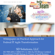 SD Solutions whitepaper for Agile IT transformation