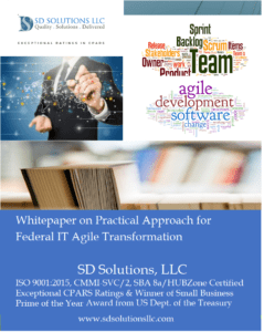 Federal IT Agile Transformation: